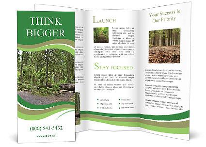 0000080012 Brochure Templates