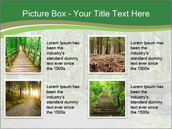 0000080012 PowerPoint Template - Slide 14