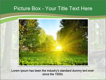 0000080012 PowerPoint Template - Slide 15