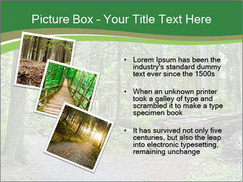 0000080012 PowerPoint Template - Slide 17