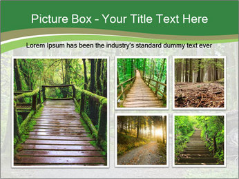 0000080012 PowerPoint Template - Slide 19