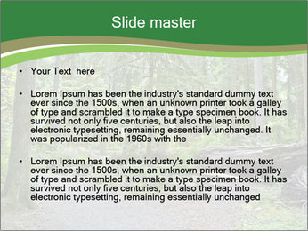 0000080012 PowerPoint Template - Slide 2