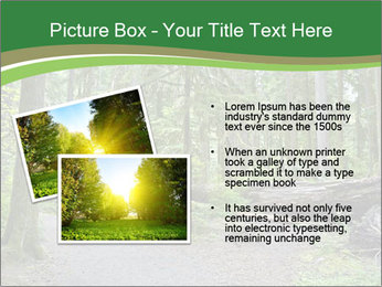 0000080012 PowerPoint Template - Slide 20