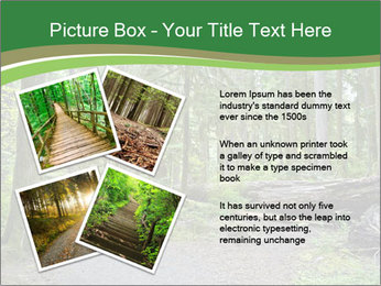 0000080012 PowerPoint Template - Slide 23