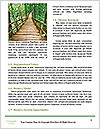 0000080012 Word Template - Page 4