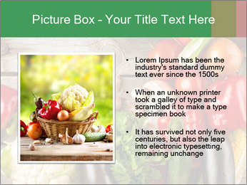 0000080017 PowerPoint Template - Slide 13