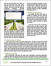 0000080022 Word Templates - Page 4