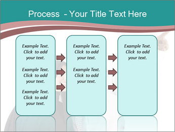 0000080024 PowerPoint Templates - Slide 86