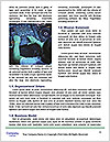 0000080026 Word Templates - Page 4