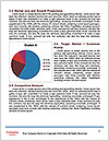 0000080029 Word Template - Page 7