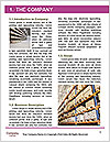 0000080031 Word Template - Page 3