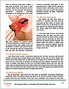 0000080032 Word Template - Page 4