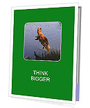 0000080037 Presentation Folder