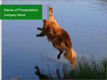 0000080037 PowerPoint Templates - Slide 1
