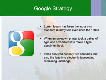 0000080037 PowerPoint Template - Slide 10