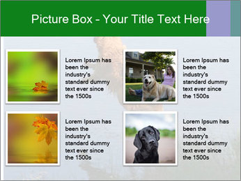 0000080037 PowerPoint Template - Slide 14