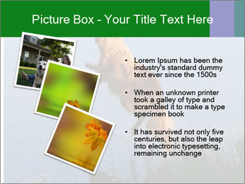 0000080037 PowerPoint Template - Slide 17