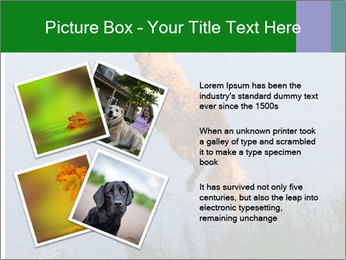 0000080037 PowerPoint Template - Slide 23