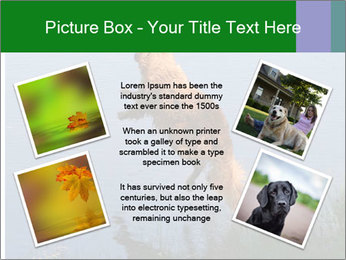 0000080037 PowerPoint Template - Slide 24