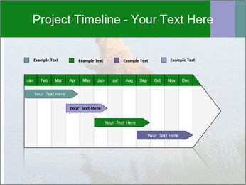 0000080037 PowerPoint Template - Slide 25