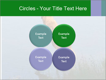0000080037 PowerPoint Template - Slide 38