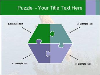 0000080037 PowerPoint Templates - Slide 40