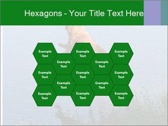 0000080037 PowerPoint Templates - Slide 44