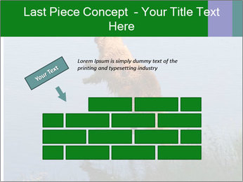 0000080037 PowerPoint Template - Slide 46