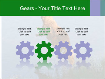 0000080037 PowerPoint Template - Slide 48