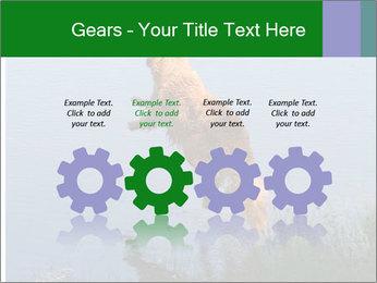 0000080037 PowerPoint Templates - Slide 48