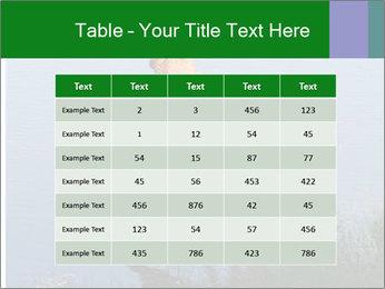 0000080037 PowerPoint Templates - Slide 55