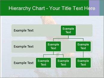 0000080037 PowerPoint Templates - Slide 67