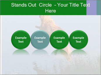 0000080037 PowerPoint Template - Slide 76