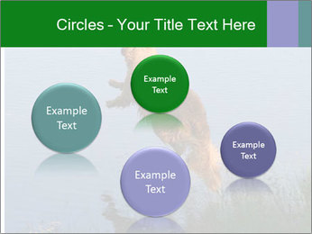 0000080037 PowerPoint Template - Slide 77