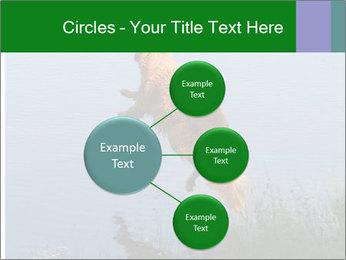 0000080037 PowerPoint Templates - Slide 79