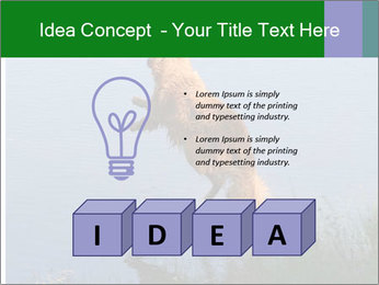 0000080037 PowerPoint Template - Slide 80