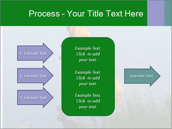 0000080037 PowerPoint Template - Slide 85