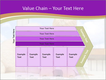 0000080038 PowerPoint Template - Slide 27