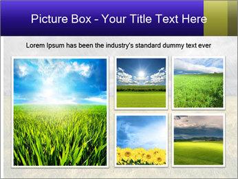 0000080056 PowerPoint Templates - Slide 19