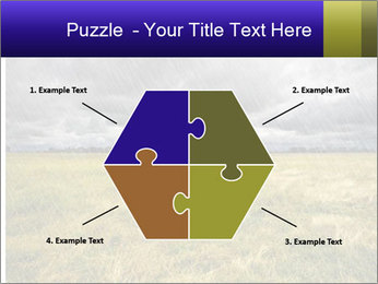 0000080056 PowerPoint Templates - Slide 40
