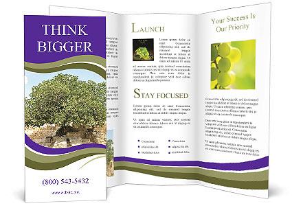 0000080058 Brochure Template