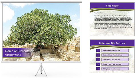 0000080058 PowerPoint Template