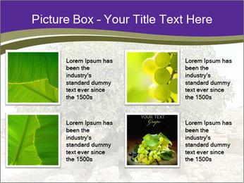 0000080058 PowerPoint Template - Slide 14