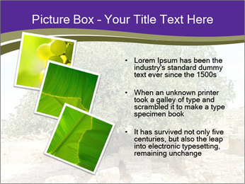0000080058 PowerPoint Templates - Slide 17