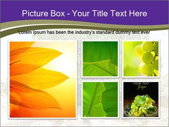 0000080058 PowerPoint Template - Slide 19