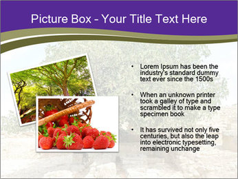 0000080058 PowerPoint Template - Slide 20