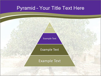 0000080058 PowerPoint Template - Slide 30