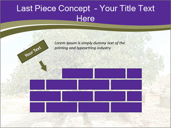 0000080058 PowerPoint Template - Slide 46