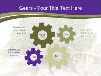 0000080058 PowerPoint Template - Slide 47