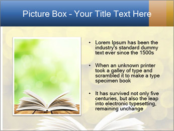 0000080068 PowerPoint Templates - Slide 13